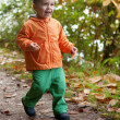 Adorable toddler boy running in autumn forest — Stock Photo