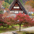 Houses in historic village Shirakawa-go, Gifu prefecture, Japan — Stockfoto