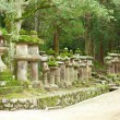 Many stone lanterns on the road leading to Kasuga shrine in Nara — Foto de Stock