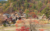 Houses in historic village Shirakawa-go, Gifu prefecture, Japan — Stock Photo