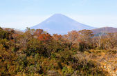 View of the mount Fuji from Hakone, Japan — Stock Photo