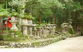 Many stone lanterns on the road leading to Kasuga shrine in Nara — Stock Photo