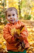 Adorable kleinkind jungen mit ahorn blätter am sonnigen herbsttag — Stockfoto