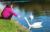 Cheerful middle aged woman feeding swans in park — Stock Photo