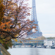 View to the Eiffel Tower from Swan island in Paris — Stock fotografie