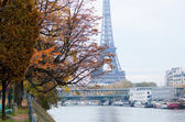 View to the Eiffel Tower from Swan island in Paris — Stock Photo