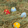 Painted colorful Easter eggs in hay — Stock Photo