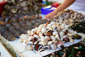 Sea clams on traditional seafood market on Boracay island in Phi — Stock Photo