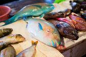 Fresh parrot fish on traditional seafood market on Boracay islan — Stock Photo