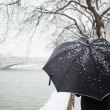 Walking on a Parisian street under snow - Stock Photo