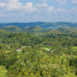 Stock Photo: Chocolate Hills, Bohol Island, Philippines