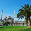 View of the Blue Mosque in Istanbul — Stock Photo #24271475