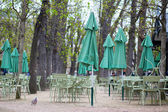 Empty tables of a cafe in Luxembourg garden — Stock Photo