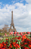 View of the Eiffel tower with beautiful tulips — Stock Photo