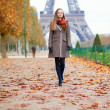 Autumn in Paris — Foto de Stock