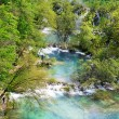 Beautiful cascades in Plitvice national park — Stock Photo