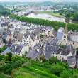 Stock Photo: Chinon, Loire Valley, France
