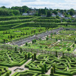 Stock Photo: Topiary in Villandry castle, France