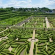 Topiary and kitchen garden in the Villandry castle — Stock Photo