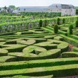 Topiary in the Villandry castle — Stock Photo