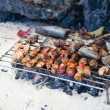 Meet and fresh fish grilled on a beach — Stock Photo