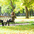 Stock Photo: Dating couple in park