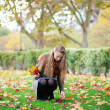 Stock Photo: Girl gathering autumn leaves