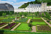 Beautiful Villandry castle , Loire valley, France — Stock Photo