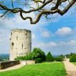 Chinon chateau, France — Stock Photo #27749533