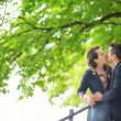 Couple kissing under a chestnut tree — Stock Photo