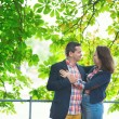 Couple hugging under a chestnut tree — Stock Photo #28177093