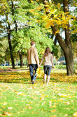 Couple walking in park on a fall day — Stock Photo