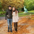 Beautiful loving couple on a fall day — Stock Photo