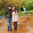 Stock Photo: Beautiful loving couple on a fall day