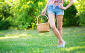 Giovane ragazza con sta cesta per fare un picnic — Foto Stock