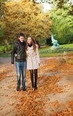 Pięknej miłości para na dzień jesieni — Zdjęcie stockowe
