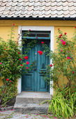 Door of a house — Stock Photo