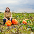 Girl on a pumpkin patch — Stok fotoğraf