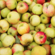 Apple background — Stockfoto