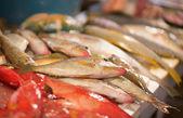 Fresh fish on a fish market — Stock Photo