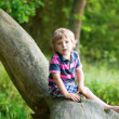 Adorable little boy in a forest — Stock Photo