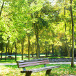 Bench in park at fall — Foto Stock