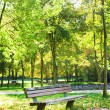 Bench in park at fall — Stock Photo