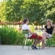 Couple relaxing in Tuileries garden of Paris — Stock Photo #38065827