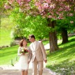 Stock Photo: Newlywed couple having stroll in park at spring
