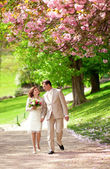 Newlywed couple having a stroll in park at spring — Stok fotoğraf