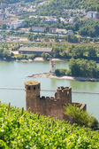 Ehrenfels Castle near Rudesheim am Rhein, Germany — Stock Photo