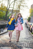 Two beautiful girls walking together and chatting — Stock Photo