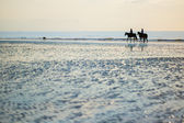 Couple on a pair of horses in Deauville, France — Stock Photo