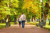 Couple walking together in park on a fall day — Stock Photo